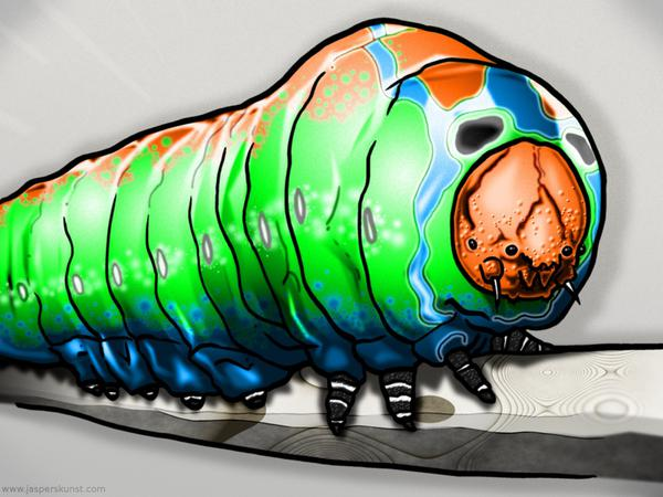 Caterpillar at second sight // 50 x 30 cm // digital composition // 2011 // 6208 views