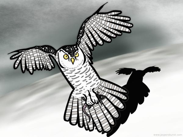 Snow owl with snack // 50 x 30 cm // digital composition // 2011 // 6262 views